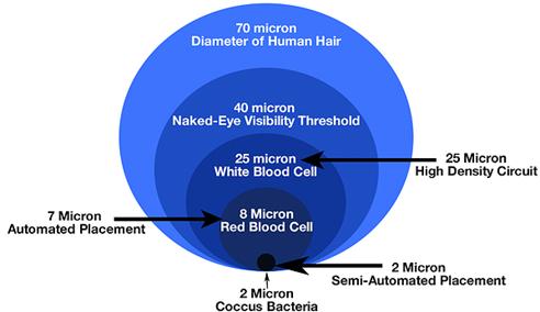 Micron Size Guide